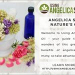 6 Ways That Angelica Seed Oil Can Be Used