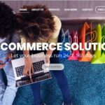 Roles of the best ecommerce development company