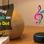 How To Play Free Music on the Echo Dot?
